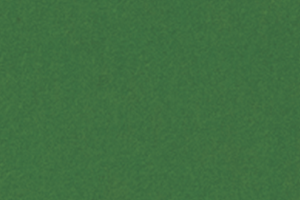 SCL_FLUORCENT GREEN