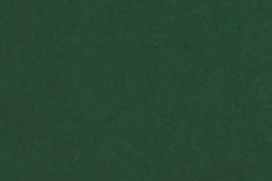 SCL_GREEN GRASS
