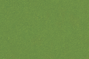 SCL_PARROT GREEN