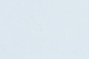 SCL_SUPER WHITE SD